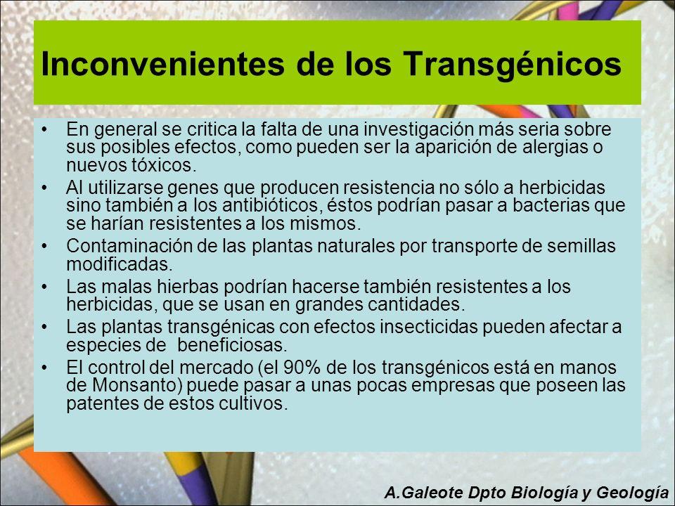 Inconvenientes de los Transgénicos