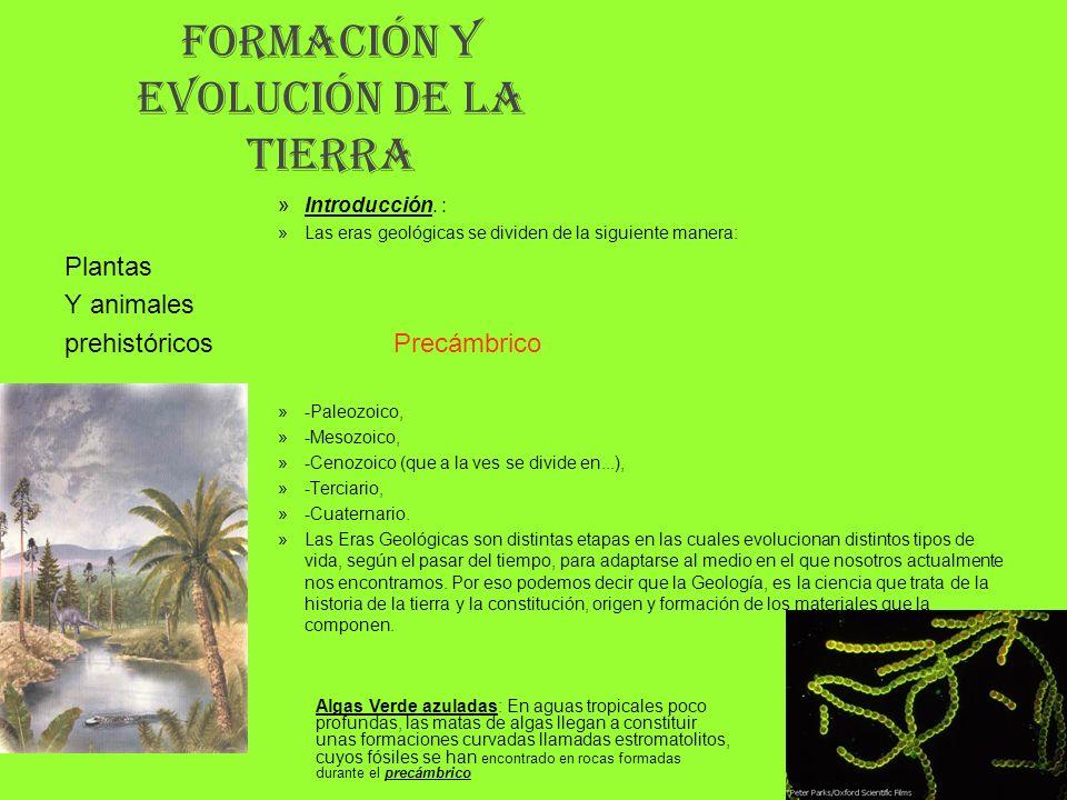 FORMACIÓN Y EVOLUCIÓN DE LA TIERRA