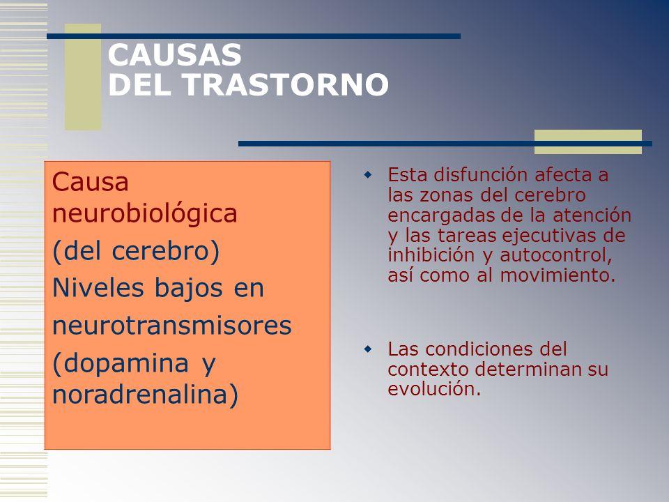CAUSAS DEL TRASTORNO Causa neurobiológica (del cerebro)