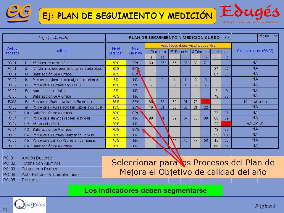 Ej: PLAN DE SEGUIMIENTO Y MEDICIÓN Los indicadores deben segmentarse