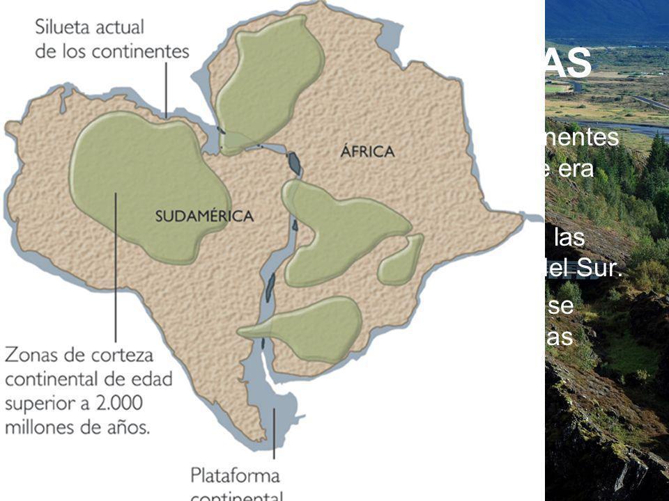 PRUEBAS GEOGRÁFICAS Wegener observó que las costas de continentes separados por océanos encajaban, lo que era lógico si antes habían estado unidos.