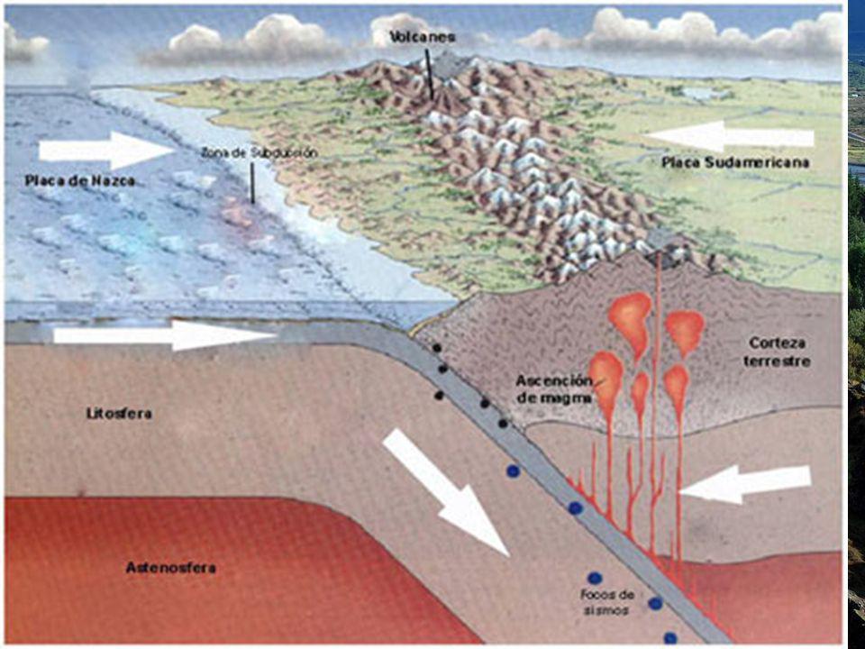 Borde de tipo andino Subduce la placa oceánica.