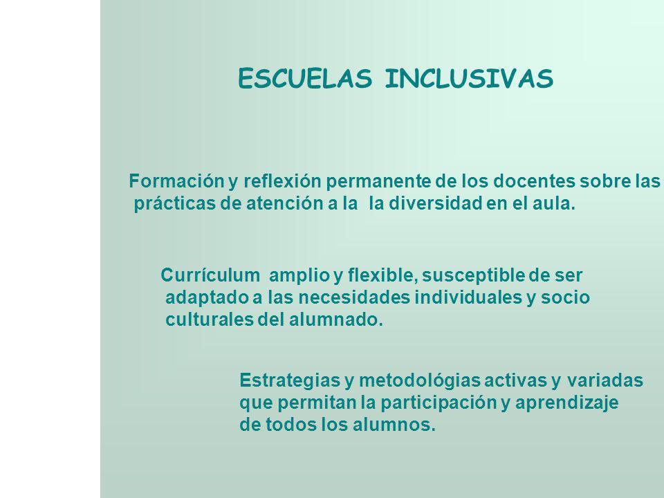 ESCUELAS INCLUSIVAS Formación y reflexión permanente de los docentes sobre las. prácticas de atención a la la diversidad en el aula.
