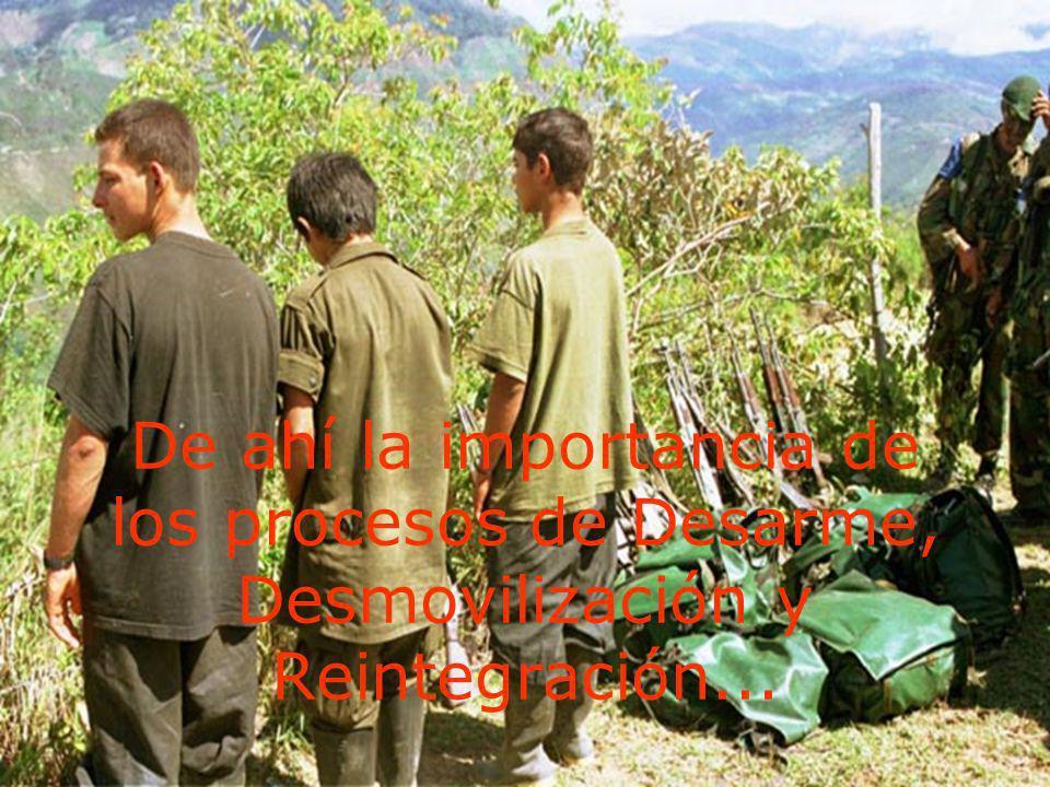 De ahí la importancia de los procesos de Desarme, Desmovilización y Reintegración...