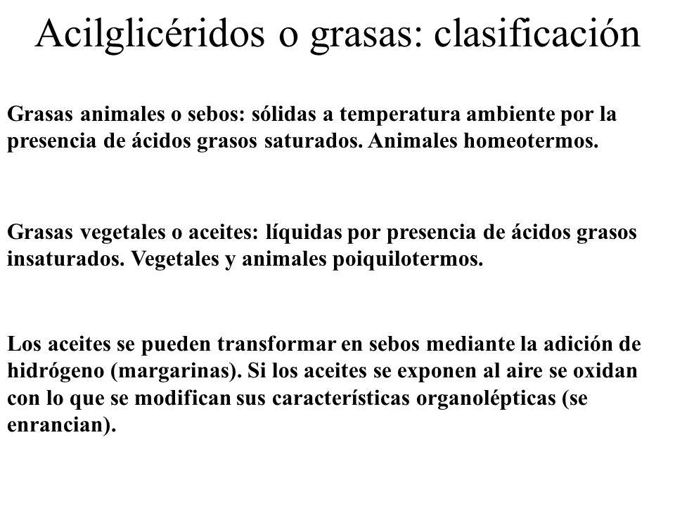 Acilglicéridos o grasas: clasificación
