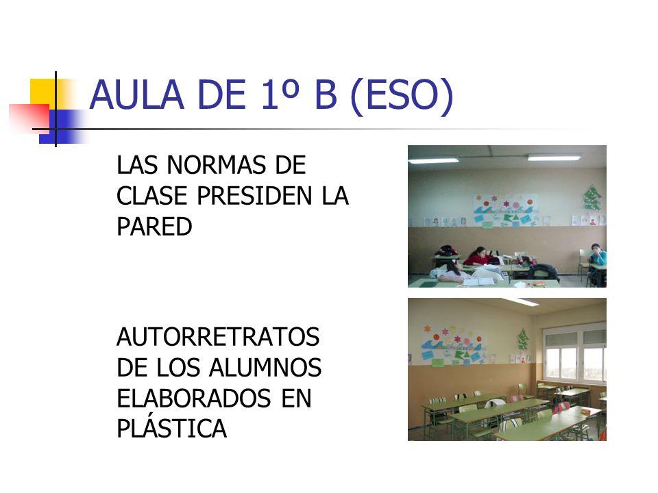 AULA DE 1º B (ESO) LAS NORMAS DE CLASE PRESIDEN LA PARED