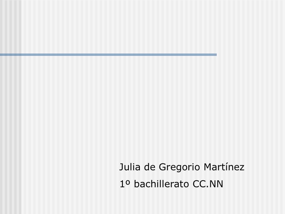 Julia de Gregorio Martínez