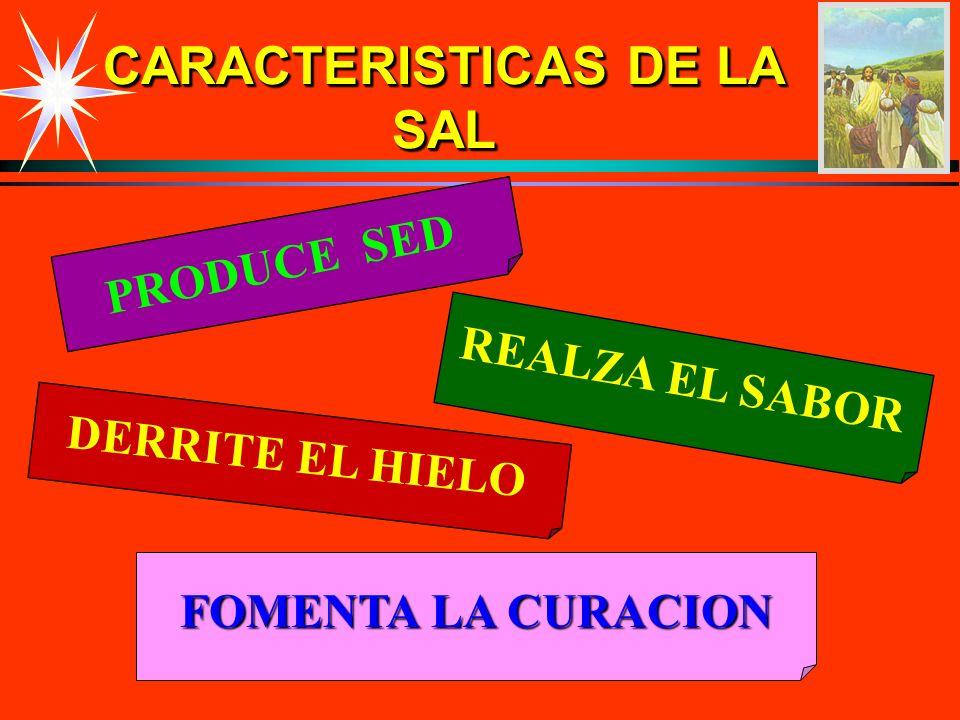 CARACTERISTICAS DE LA SAL