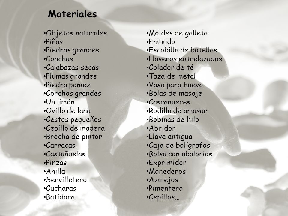 Materiales Objetos naturales Moldes de galleta Piñas Embudo