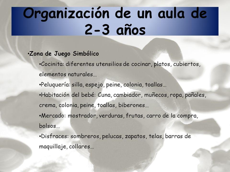 Organización de un aula de 2-3 años