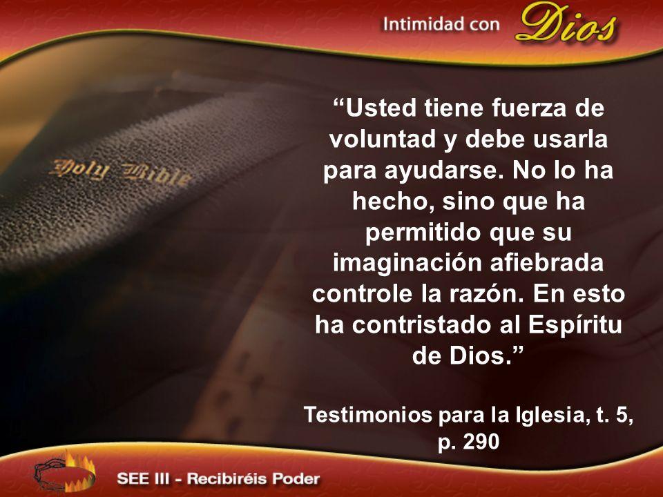 Testimonios para la Iglesia, t. 5, p. 290
