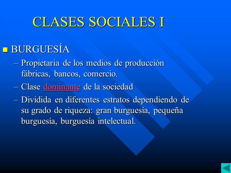 CLASES SOCIALES I BURGUESÍA