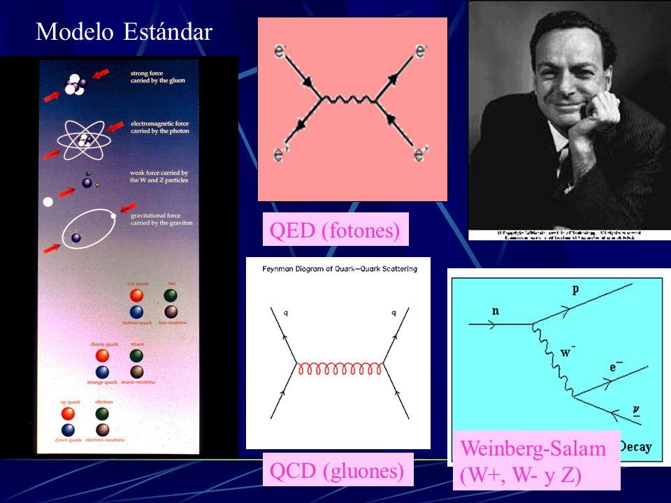Modelo Estándar QED (fotones) Weinberg-Salam (W+, W- y Z)