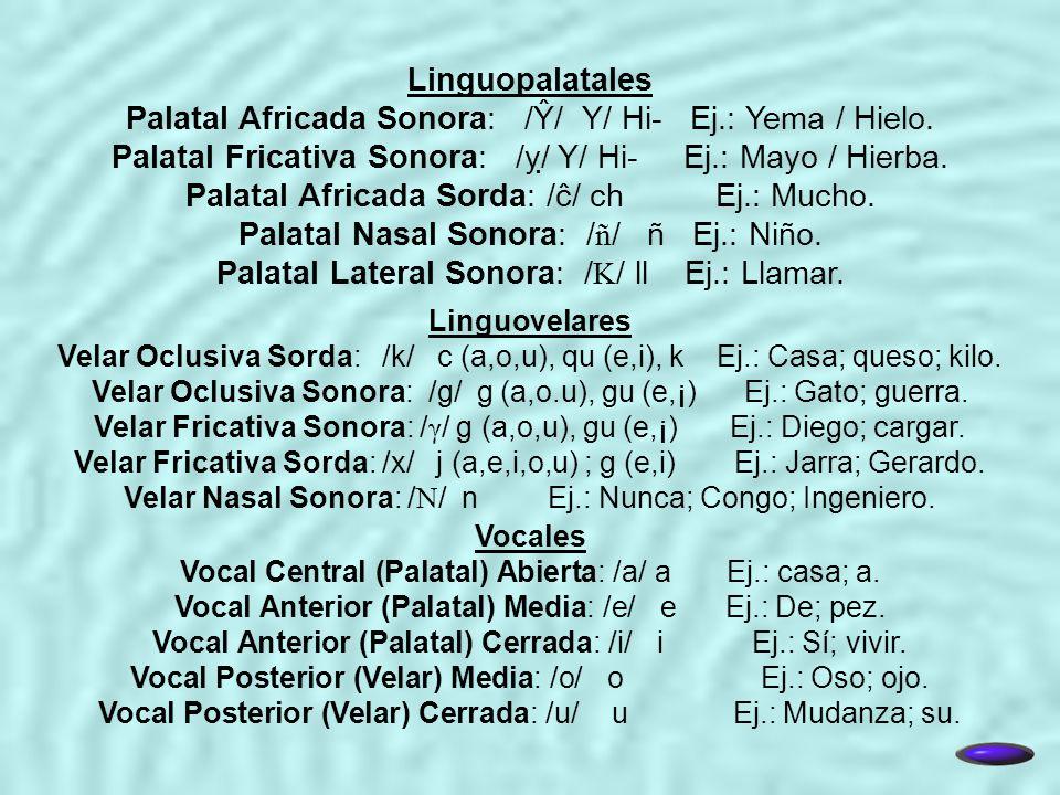 Palatal Africada Sonora: /Ŷ/ Y/ Hi- Ej.: Yema / Hielo.