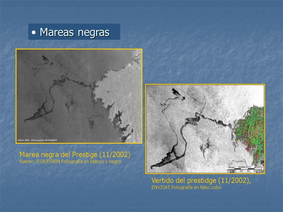 Mareas negras Marea negra del Prestige (11/2002) Fuente: ESA/ESRIN Fotografía en blanco y negro.