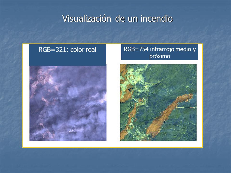 Visualización de un incendio