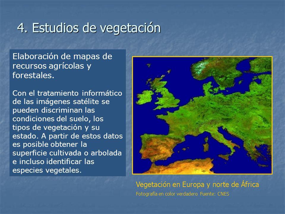 4. Estudios de vegetación