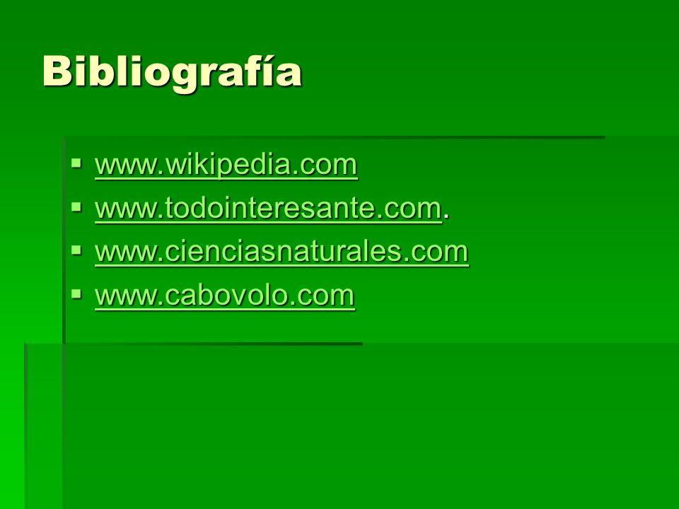 Bibliografía www.wikipedia.com www.todointeresante.com.