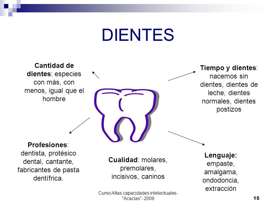 DIENTES Cantidad de dientes: especies con más, con menos, igual que el hombre.