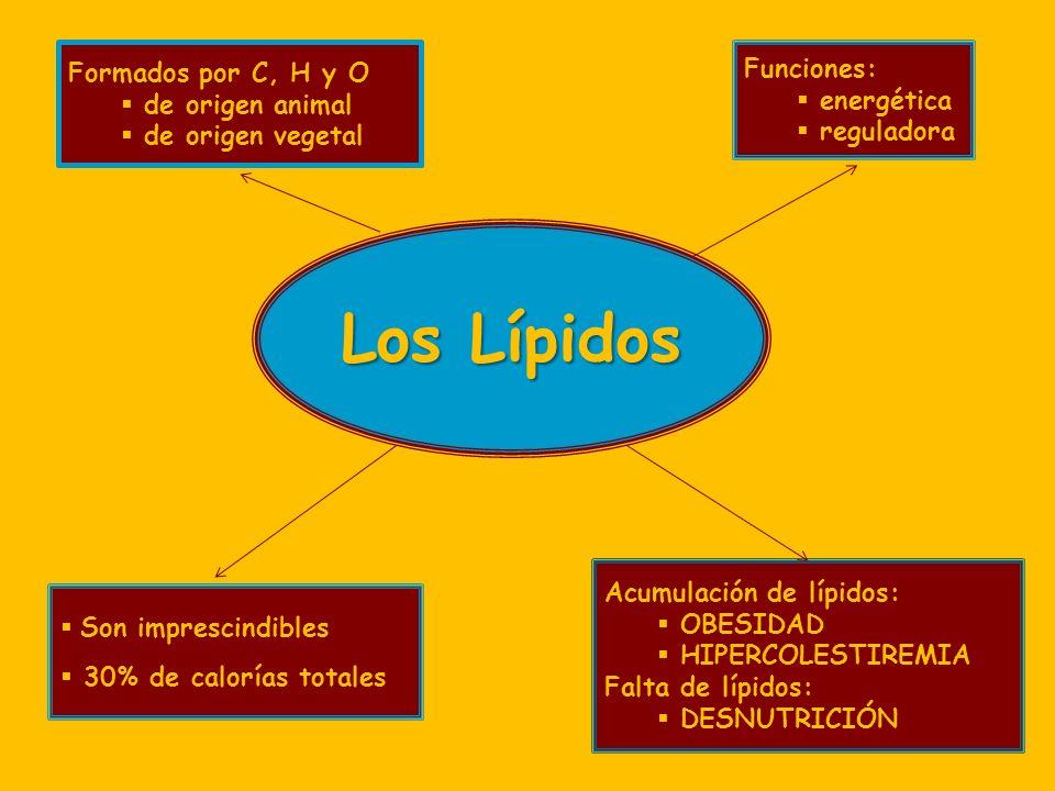 Los Lípidos Formados por C, H y O Funciones: de origen animal