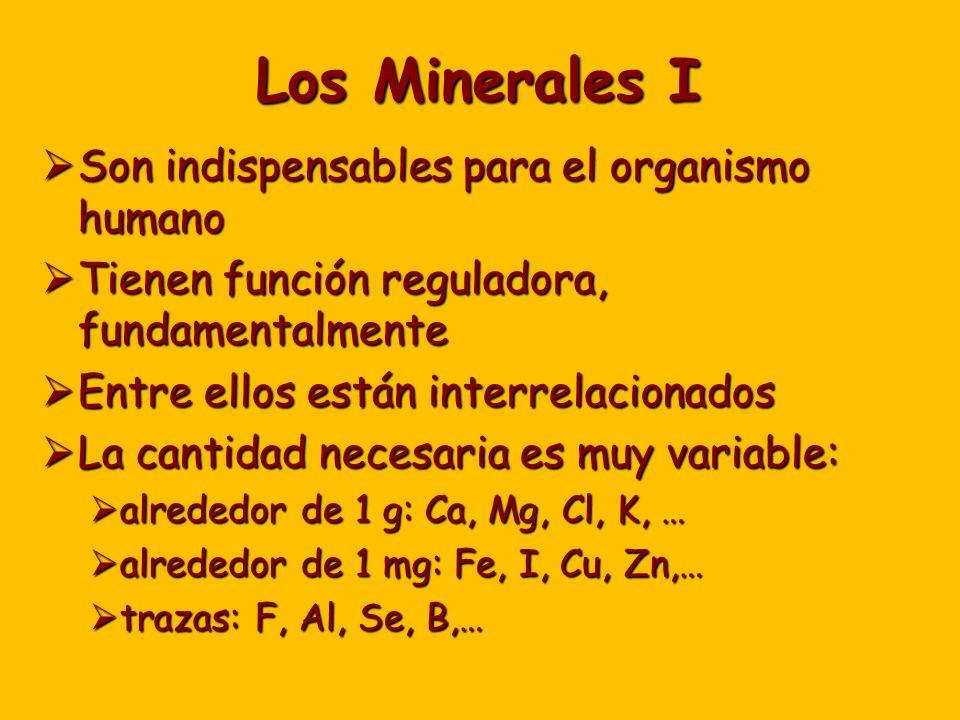 Los Minerales I Son indispensables para el organismo humano