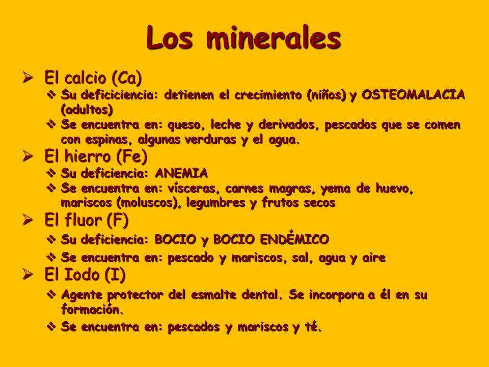 Los minerales El calcio (Ca) El hierro (Fe) El fluor (F) El Iodo (I)