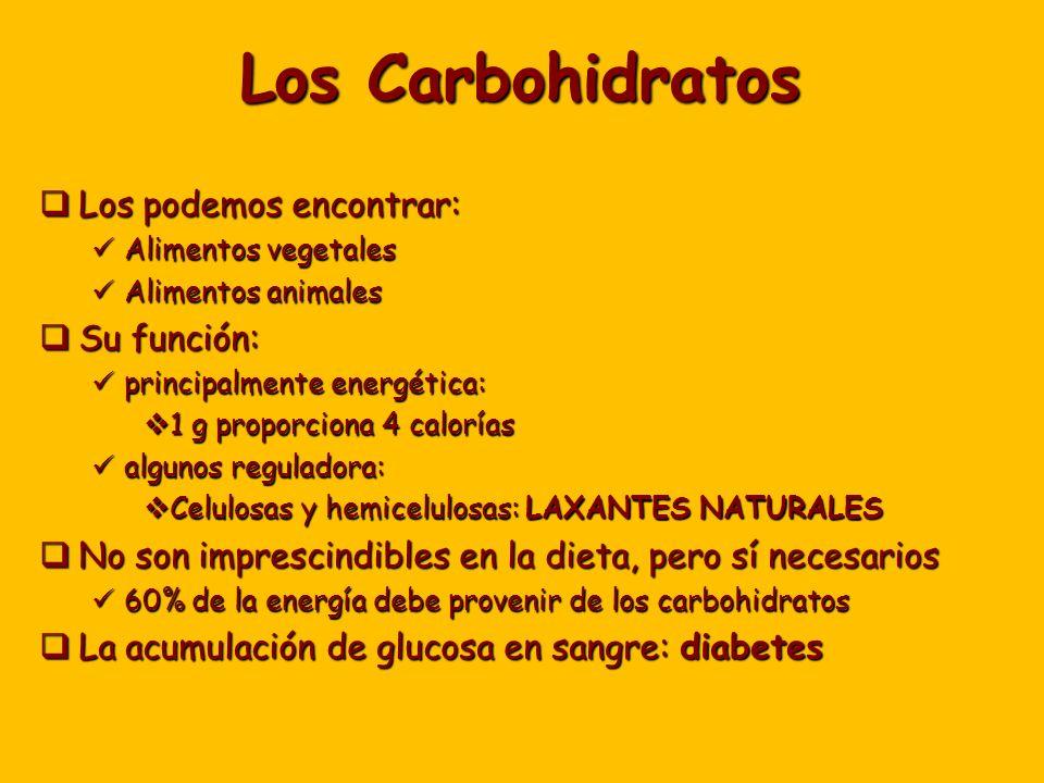 Los Carbohidratos Los podemos encontrar: Su función: