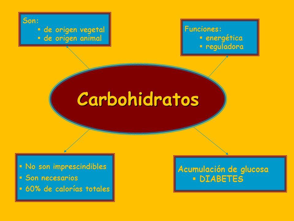 Carbohidratos Acumulación de glucosa DIABETES Son: de origen vegetal