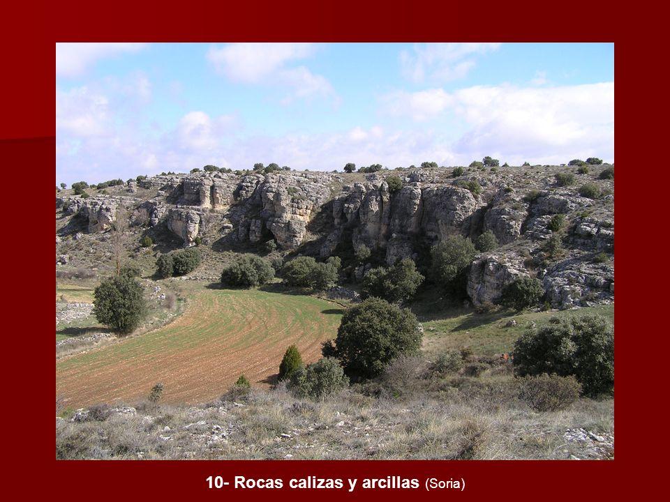 10- Rocas calizas y arcillas (Soria)