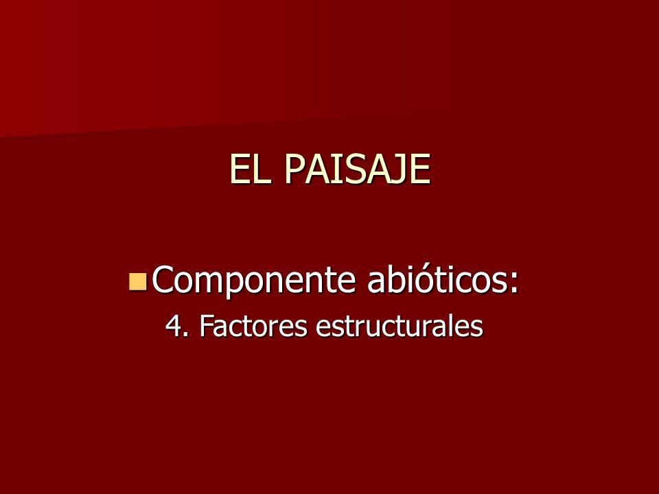 EL PAISAJE Componente abióticos: 4. Factores estructurales