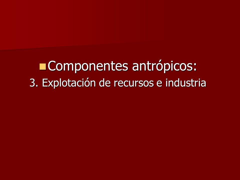Componentes antrópicos: