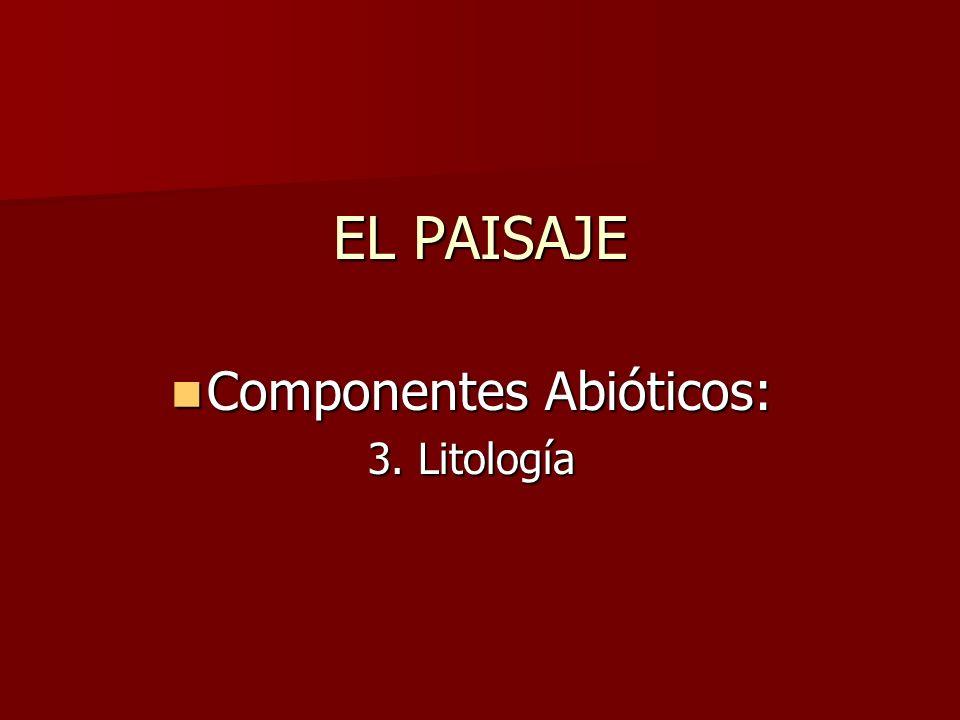 Componentes Abióticos: