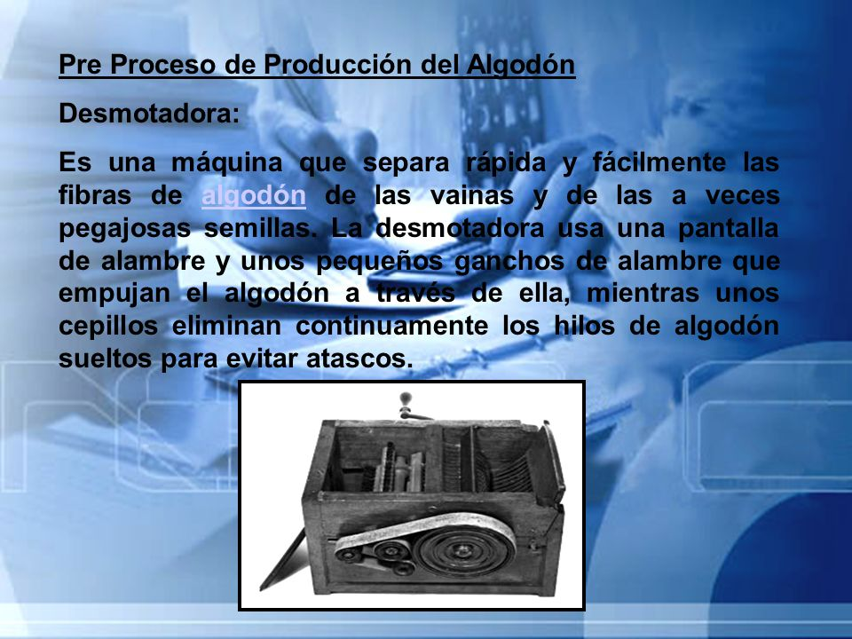 Pre Proceso de Producción del Algodón