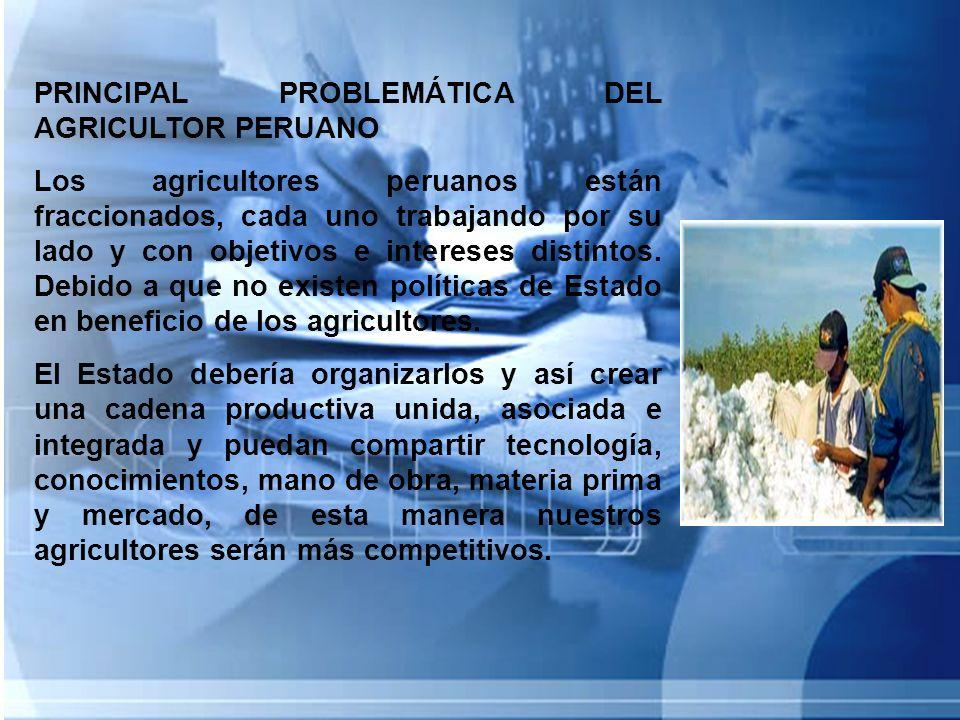 PRINCIPAL PROBLEMÁTICA DEL AGRICULTOR PERUANO