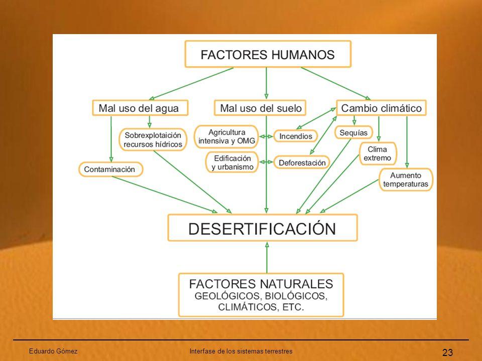 Interfase de los sistemas terrestres