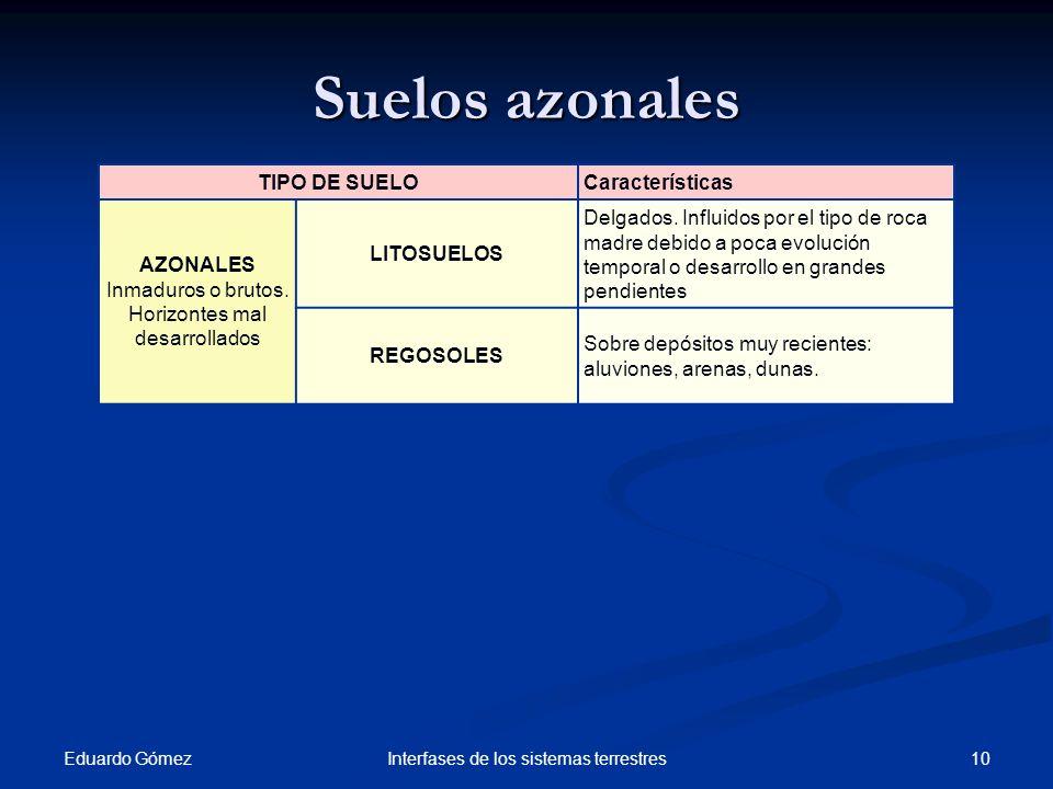 Suelos azonales TIPO DE SUELO Características AZONALES