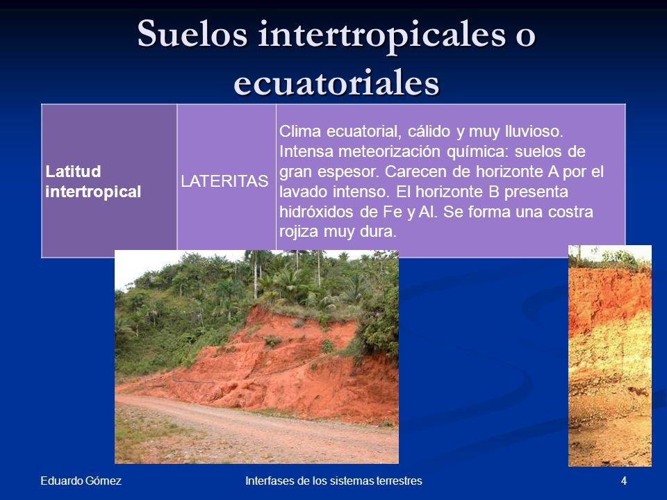 Suelos intertropicales o ecuatoriales