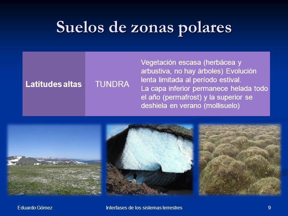 Suelos de zonas polares