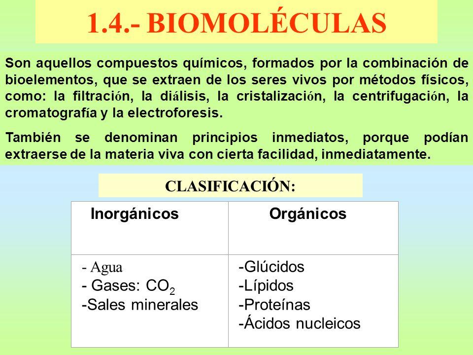 1.4.- BIOMOLÉCULAS CLASIFICACIÓN: - Agua - Gases: CO2 -Sales minerales