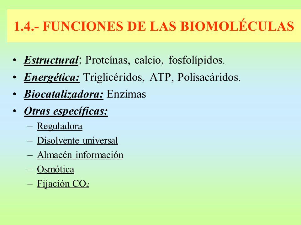 1.4.- FUNCIONES DE LAS BIOMOLÉCULAS
