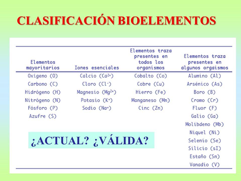 CLASIFICACIÓN BIOELEMENTOS