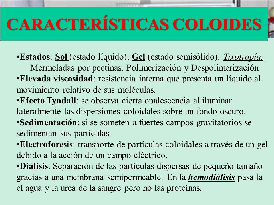 CARACTERÍSTICAS COLOIDES