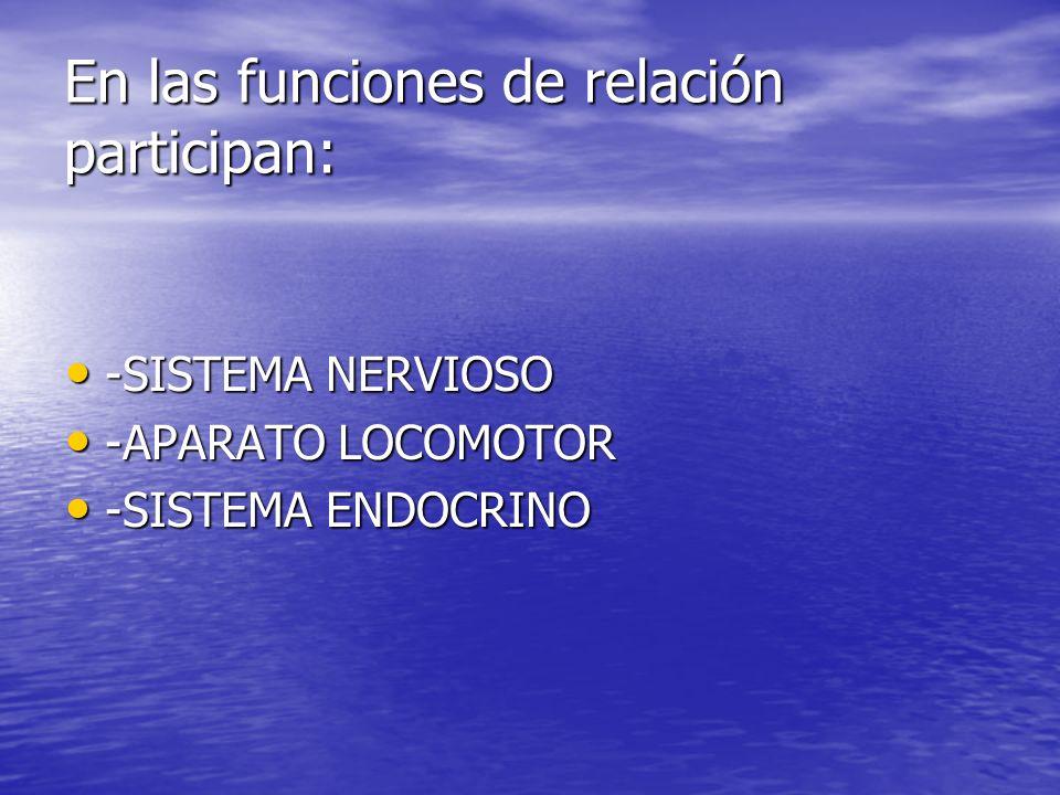 En las funciones de relación participan:
