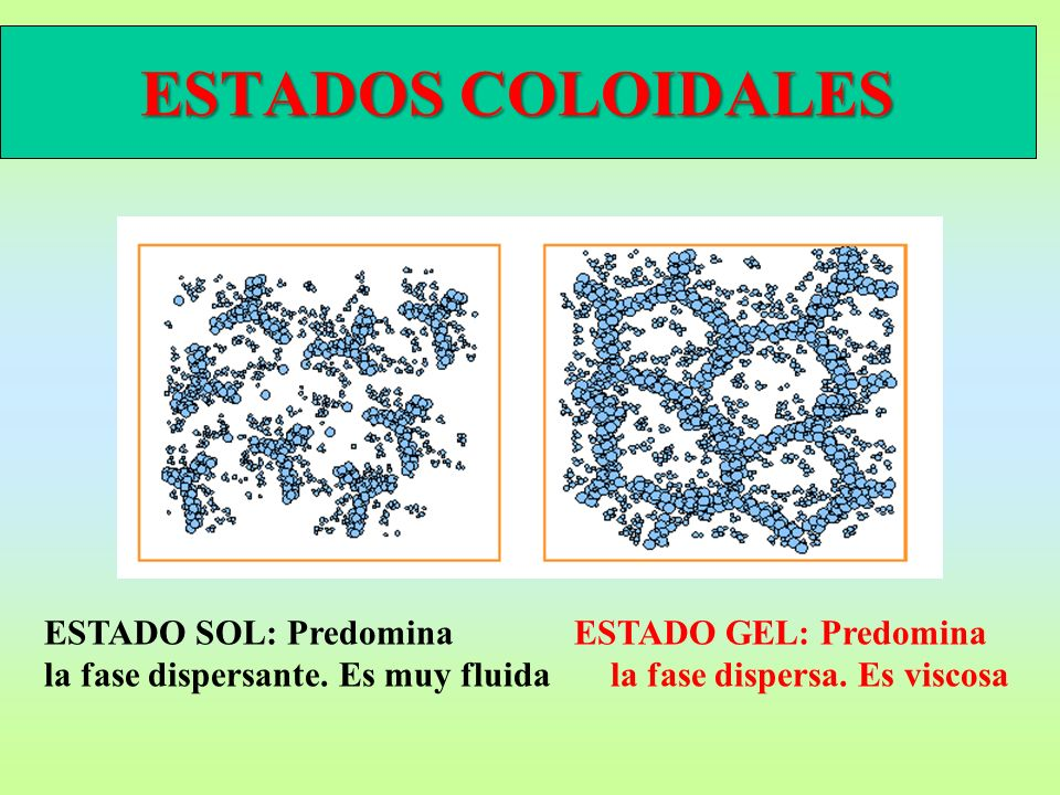 ESTADOS COLOIDALES ESTADO SOL: Predomina ESTADO GEL: Predomina la fase dispersante.