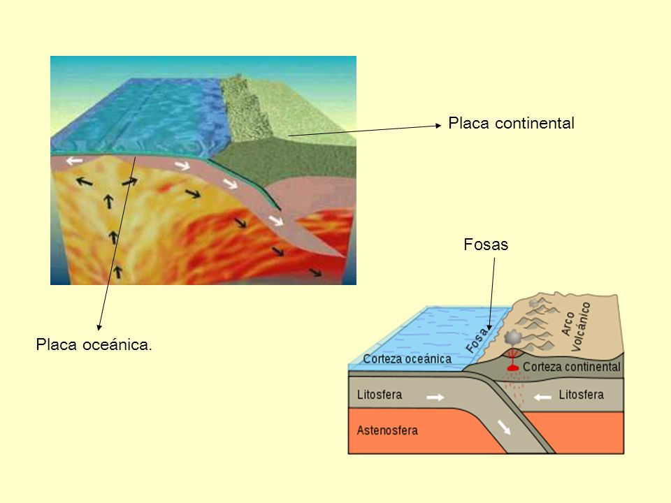 Placa continental Fosas Placa oceánica.