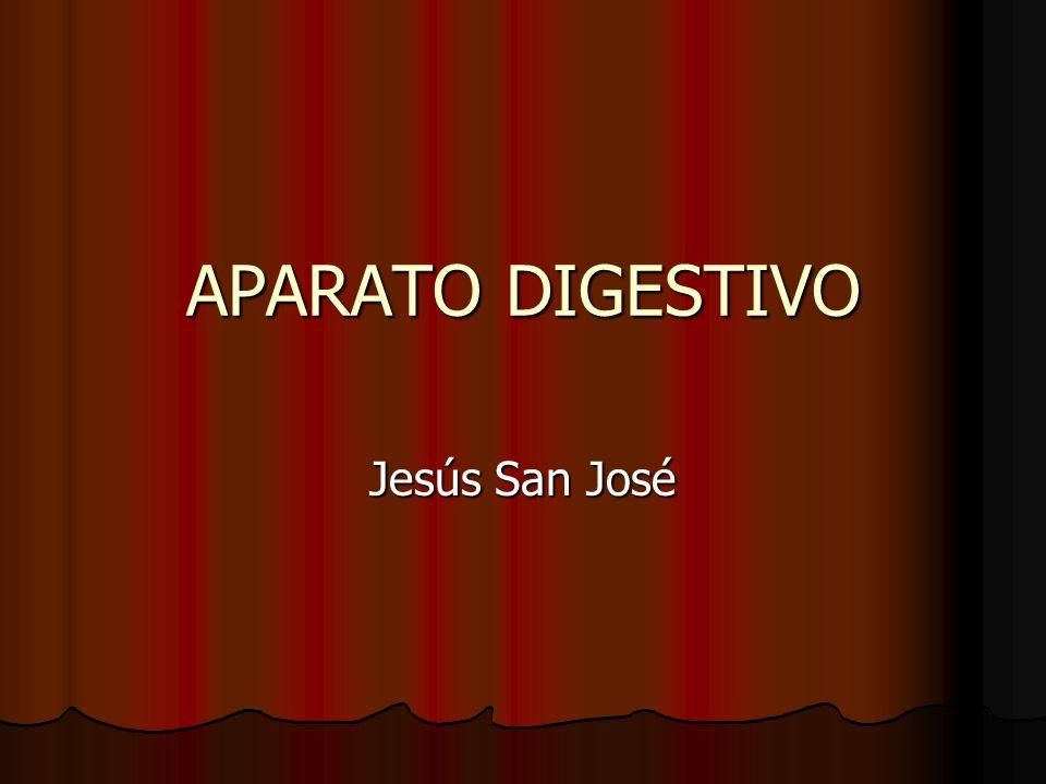 APARATO DIGESTIVO Jesús San José