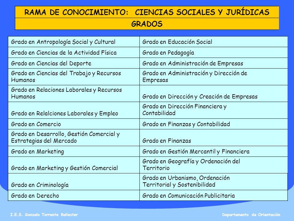 RAMA DE CONOCIMIENTO: CIENCIAS SOCIALES Y JURÍDICAS