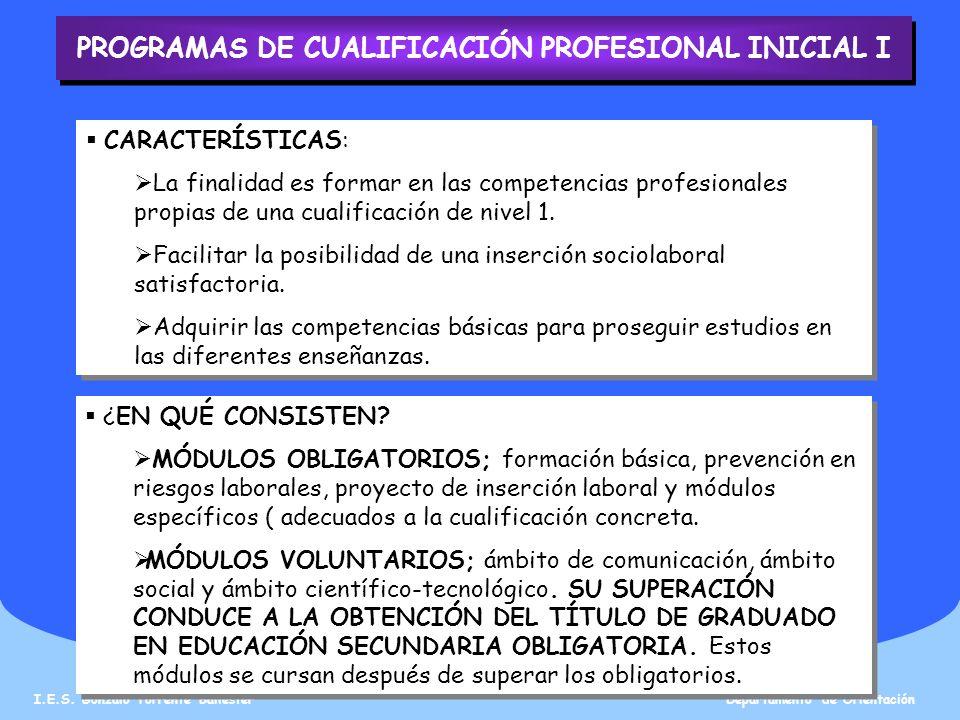 PROGRAMAS DE CUALIFICACIÓN PROFESIONAL INICIAL I