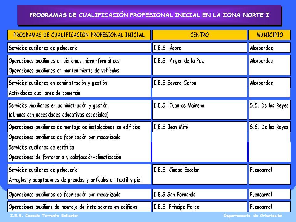 PROGRAMAS DE CUALIFICACIÓN PROFESIONAL INICIAL EN LA ZONA NORTE I