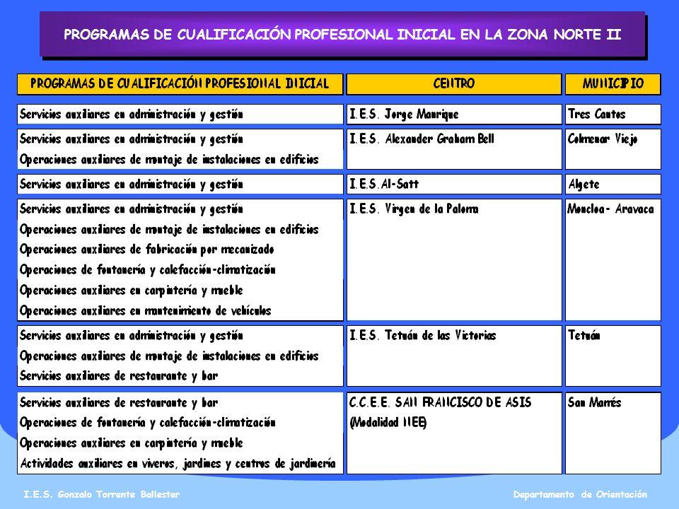 PROGRAMAS DE CUALIFICACIÓN PROFESIONAL INICIAL EN LA ZONA NORTE II